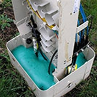 Picture for category Pest & Moisture Control